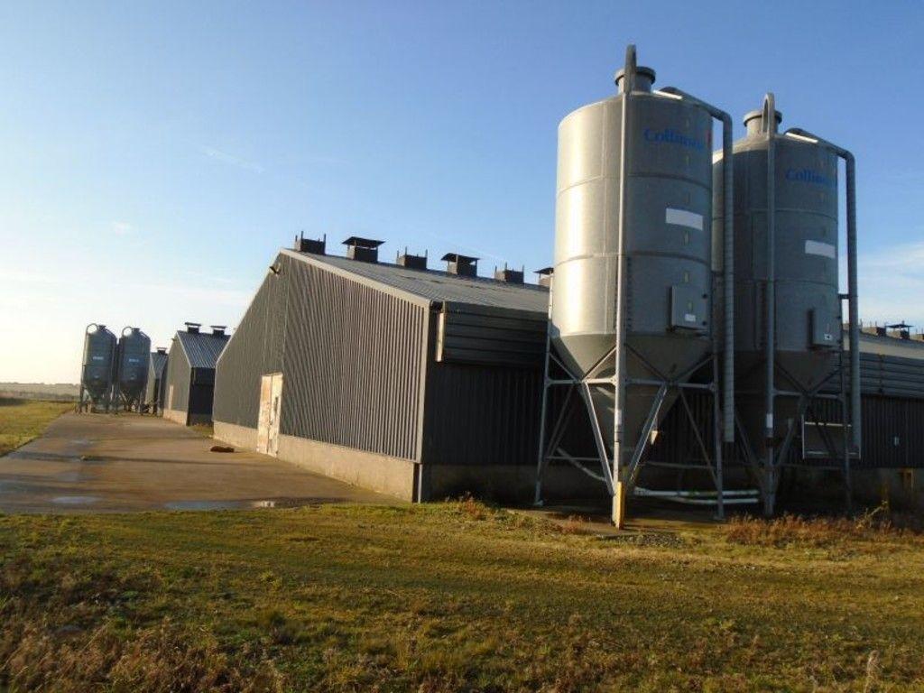 Industrial barn side view