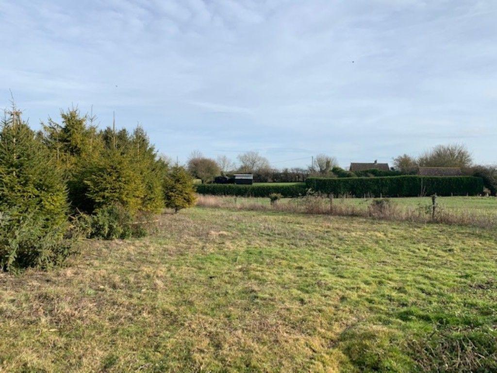 Empty field in countryside