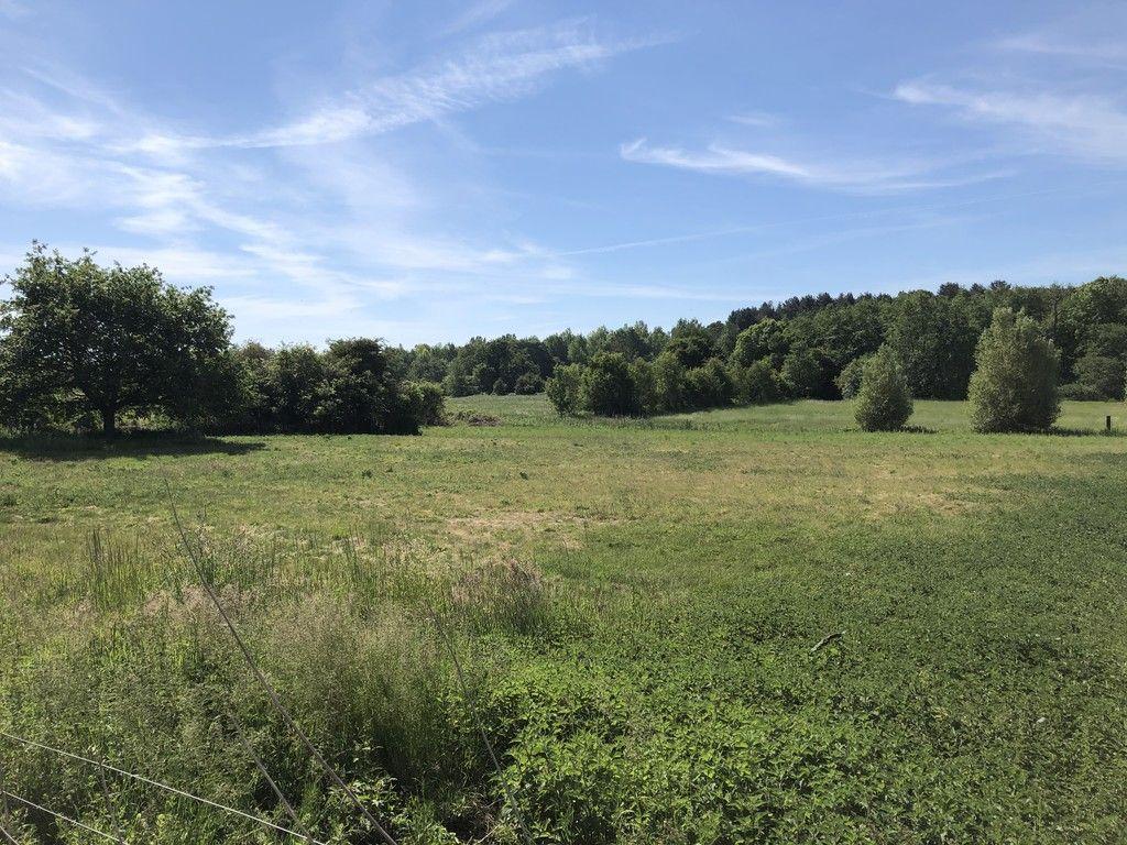 Large open field plan