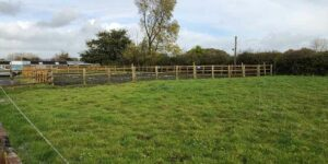 Horse riding arena by field